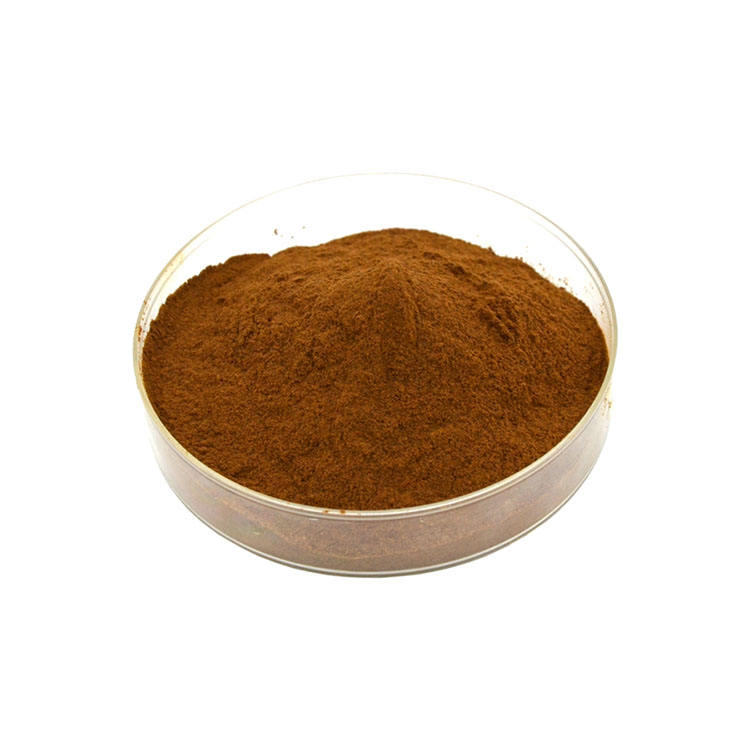 Factory Supply lotus leaf pe extract 10 1