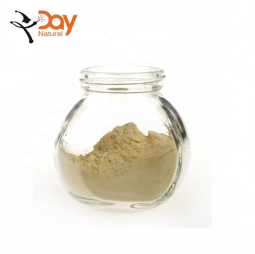 Korean Ginseng Root Extract Powder Ginsenoside Rh2 16% For Sale