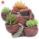 Home planter succulent flower pot garden