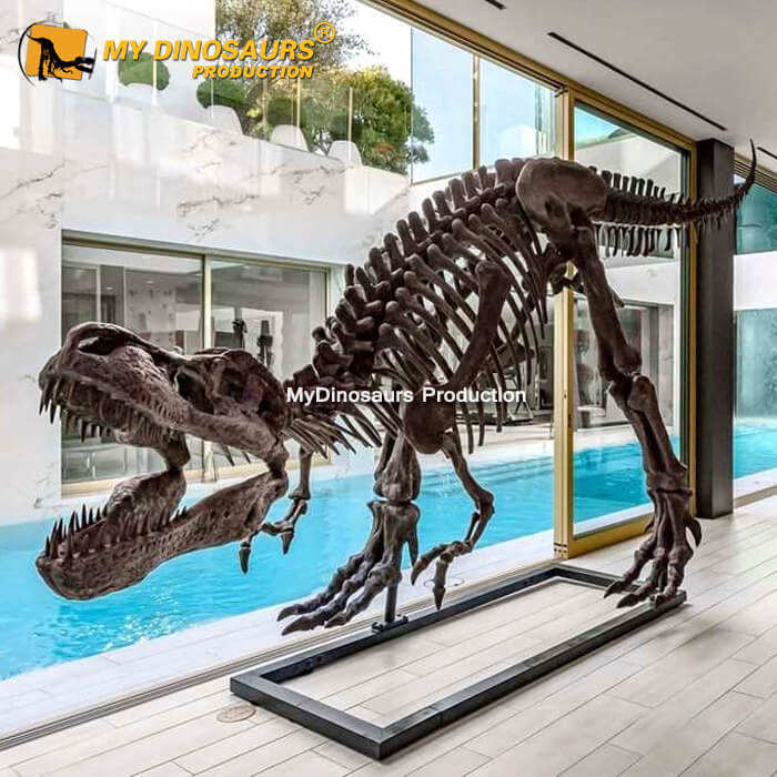 MY DINO DS099 Museum Quality Fiberglass Dinosaur Skeleton for Exhibition