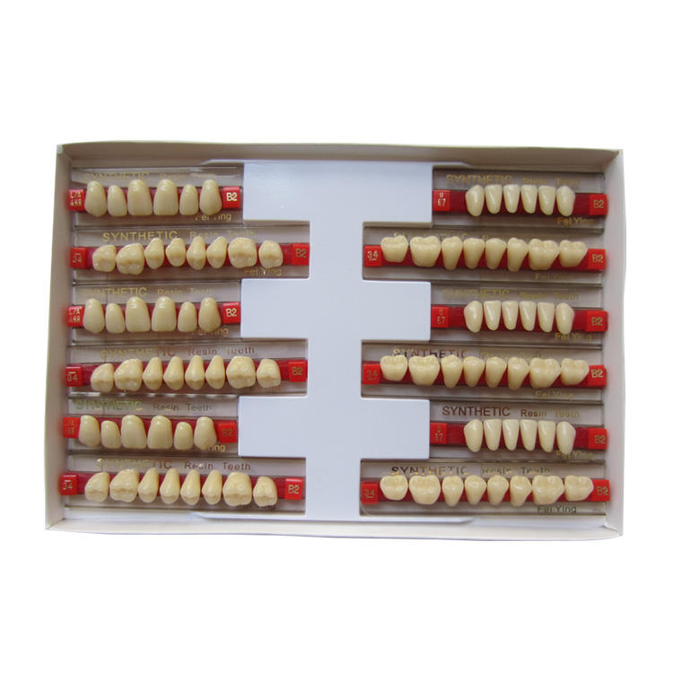 Denspay Lab 2 Layer Acrylic Teeth Full Set For Dentures With Factory Price Dental Artificial False Teeth