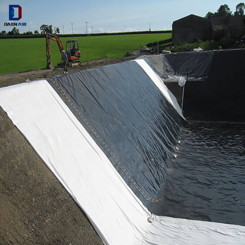 Fish Pond Lining Liner HDPE Water Reservoir 1mm Pond Liner/Geomembrane for Fish Farming