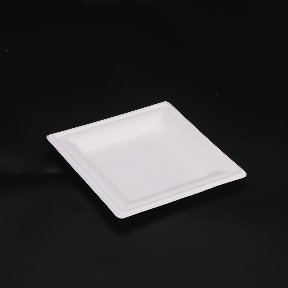 100% compostable Large Size Sugarcane Bagasse Snacks Paper Plates Square With Handle