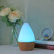 Mini lamp aroma diffuser oem private humidifier ultrasonic dispenser with water mist spray nozzle for essential oils