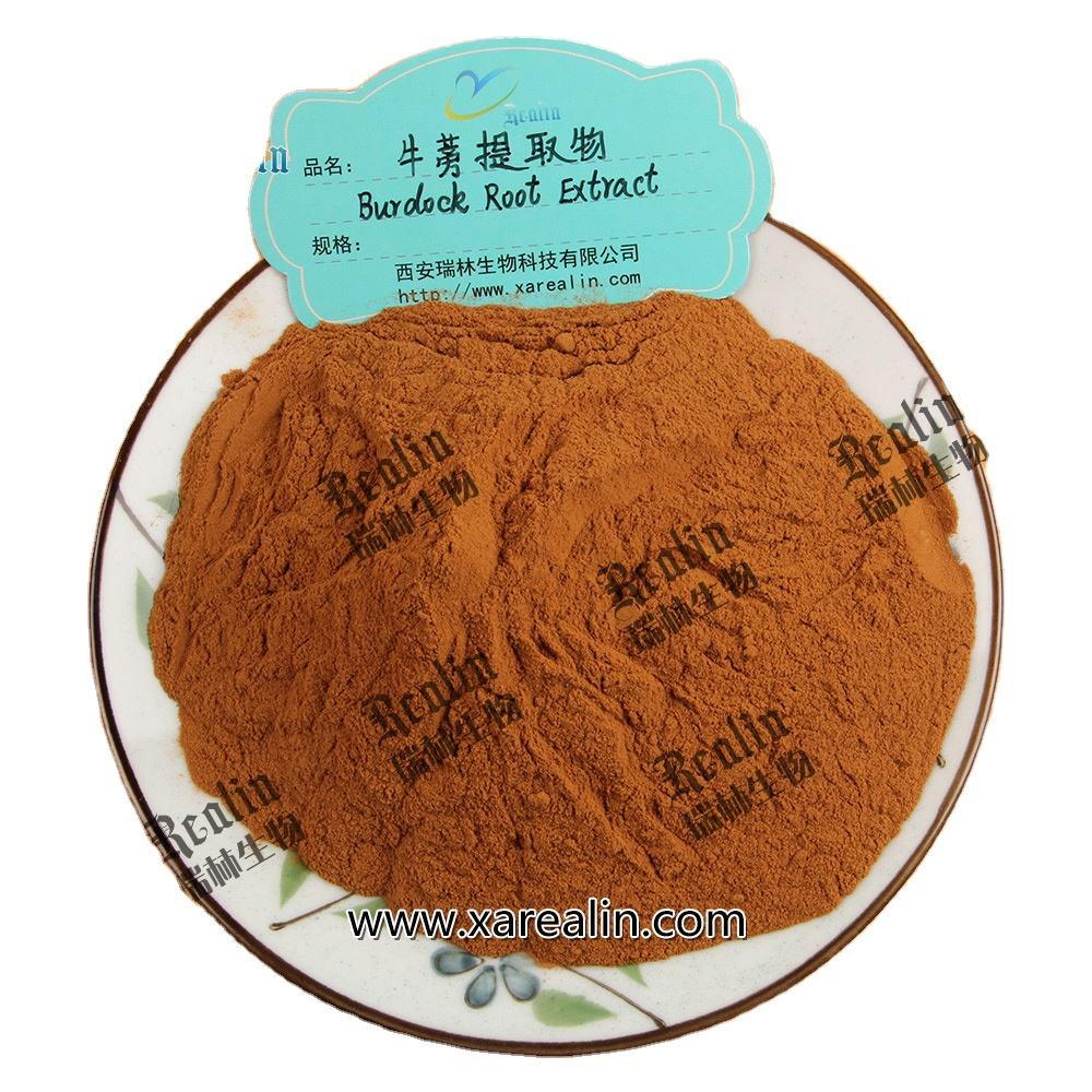 Chinese Herbal Medicine Materials Arctium Lappa P.E. Burdock Seed Extract