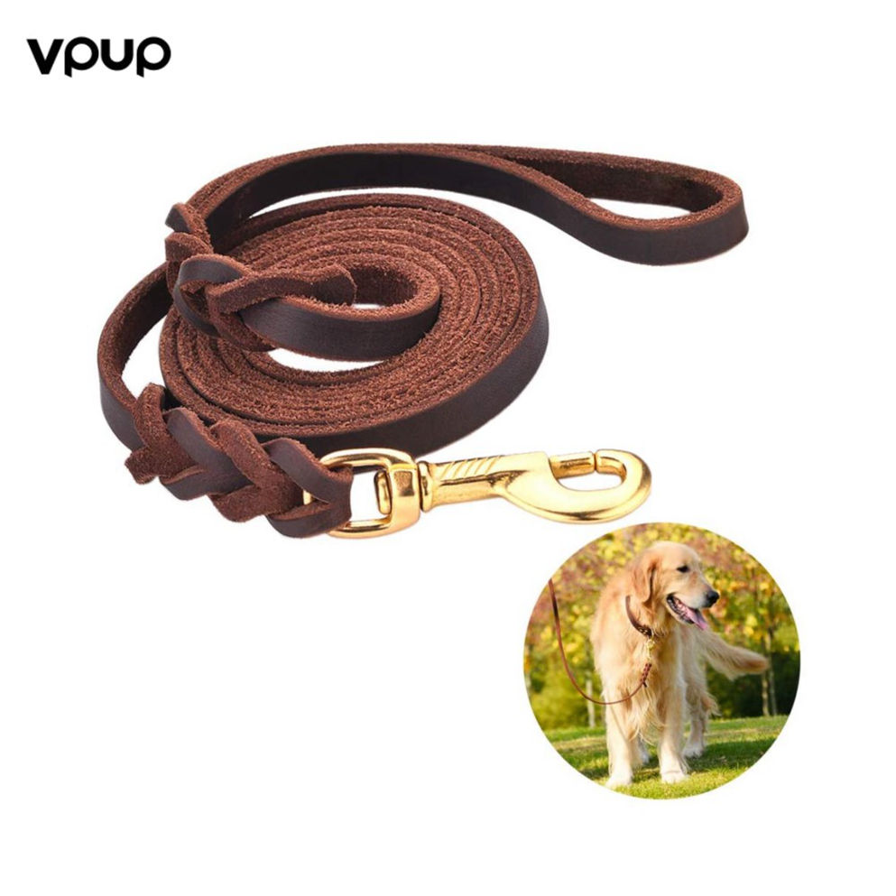 Tranparent Coloured Twisted Dog Rope Leash Oeko Tex Manufacturer High Uhmwpe Pulling Winch Neck Dollar In 5 Per Offers