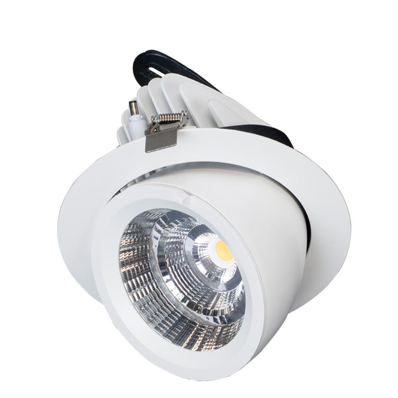 30W COB Dimmable LED di Messa A Fuoco Luci Le Luci del Punto per Showroom Galleria Del Museo