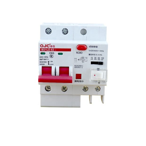 QJC 11-year factory high quality BD1LE-63 RCBO leakage protection, Mcb with switch adjustable mA miniature leakage circuit break