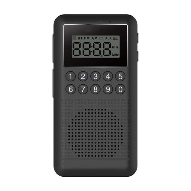 2021 Fabrik billig tragbare FM Radio Digital Scanner Radio