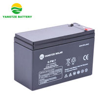 China Manufacturer Yangtze 12v 7ah battery plate