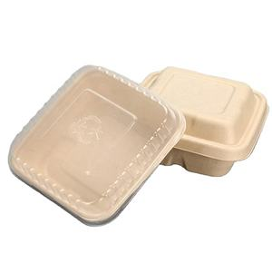 Wholesale Packaging Food Container Biodegradable Disposable Lunch Box with lid