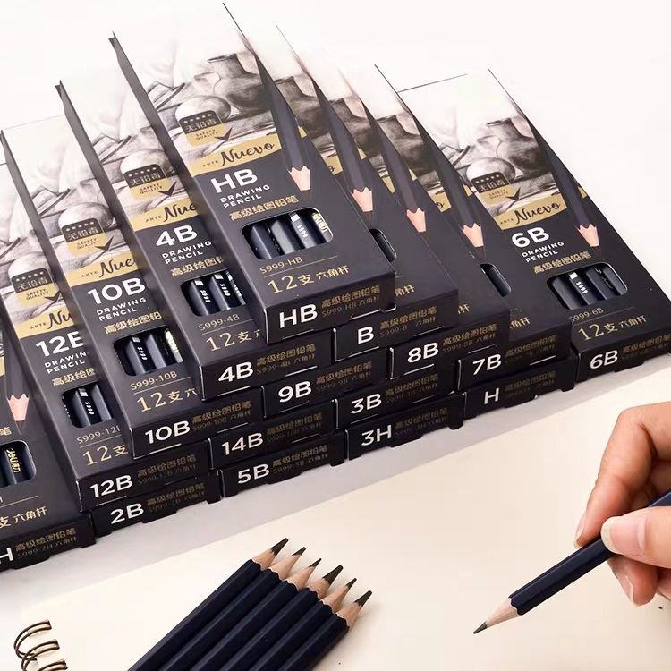 Art Supplies Graphite Drawing Pencils and Sketch Graphite Pencil Set,12 Graphite Pencils (2H, HB, B, 2B, 3B,4B,5B, 6B)