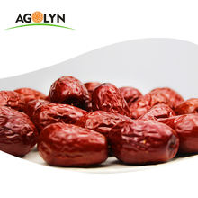 Xinjiang high quality dried red jujube fruit red dates