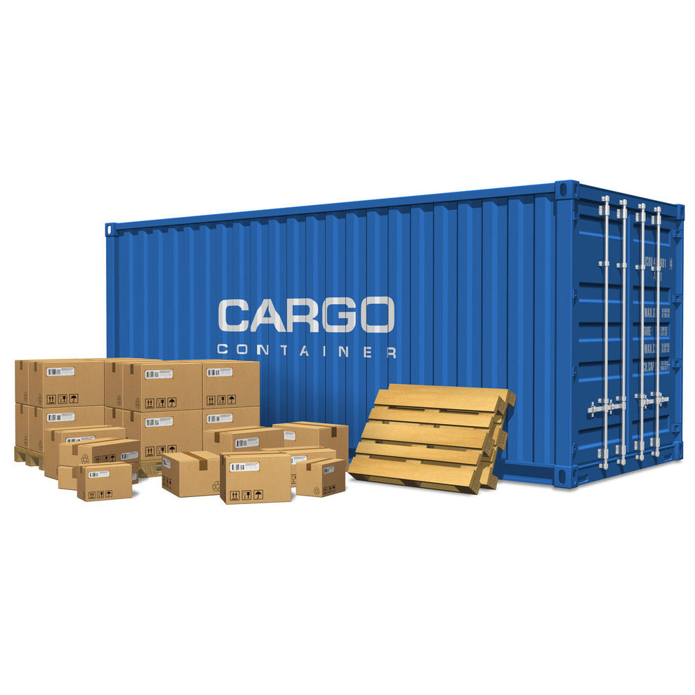 International Freight Forwarder Sea Ocean Freight Service from Shenzhen Guangzhou Hong Kong Shanghai to Algeria by Pd Shipping