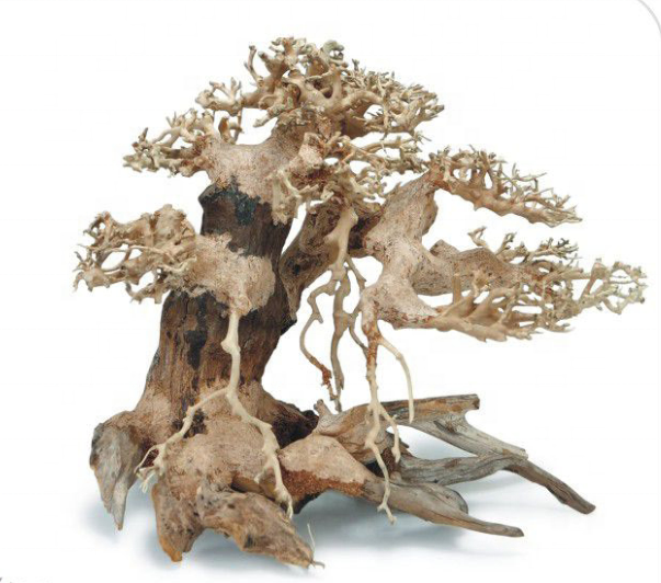 China Driftwood China Driftwood Manufacturers And Suppliers On Alibaba Com
