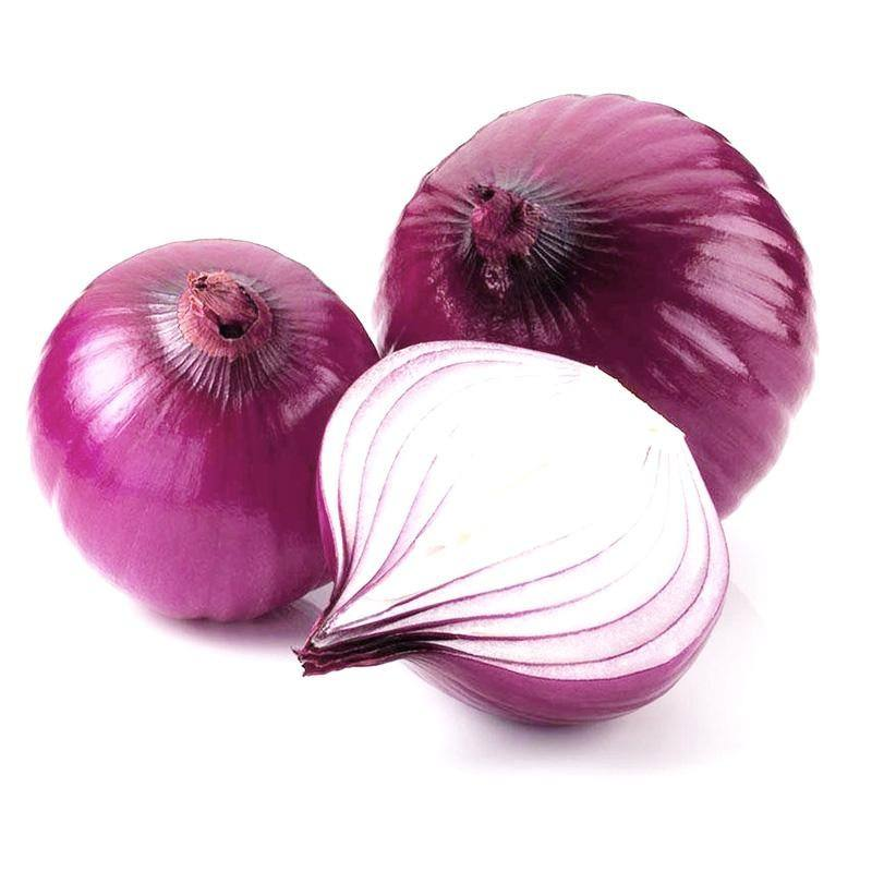 wholesale onions by onion suppliers on red onion price