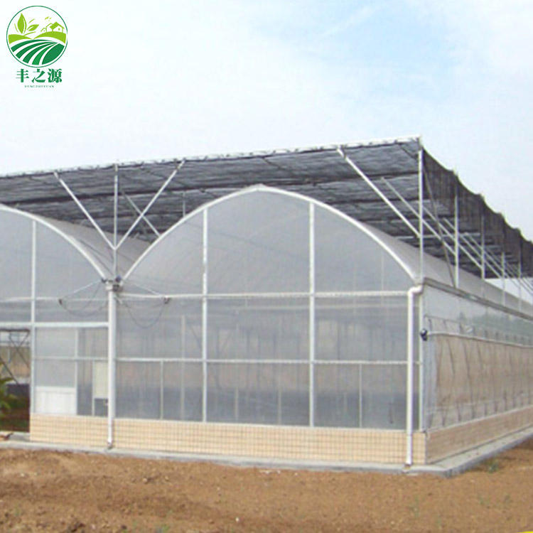Agricultural Multi-Span Plastic Tunnel Greenhouse
