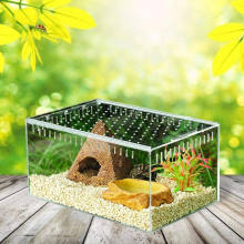 Plastic Reptile Terrarium Breeding Box Turtle Wild Trap Holding Large Box Acrylic Animal Pet Cage For Sale