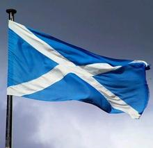 wholesale 3x5 polyester promotional Scotland blue flag with a white x
