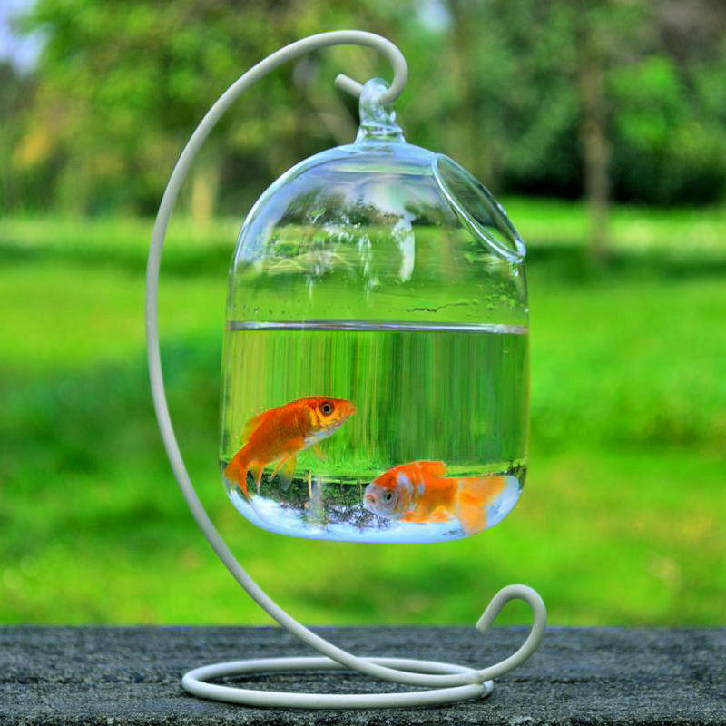 Hanging Transparent Mini Desktop Glass Aquarium Accessories Fish Tank