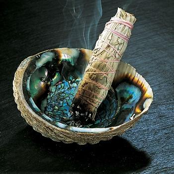 Factory Direct Sales Raw Abalone Shell Native American Smudge Ceremony Supplies