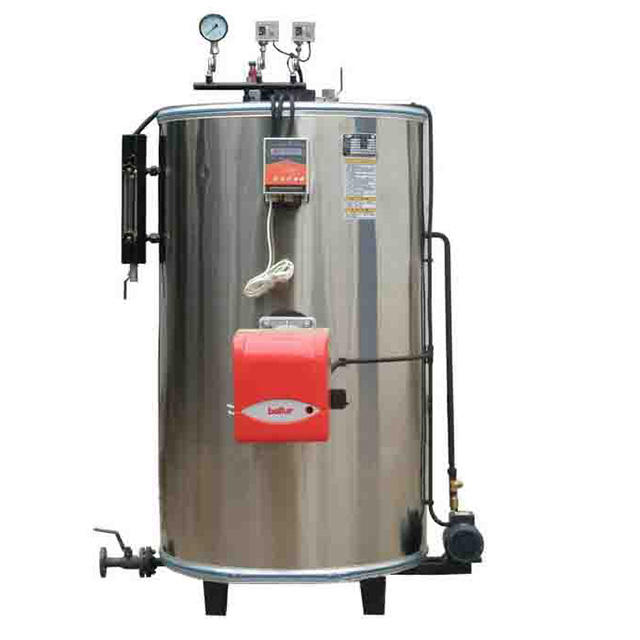 Natural Gas/Oil Steam Boiler For Central Heating And Greenhouse Heating