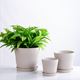China Wholesale 3pcs set white Cheap Indoor Modern Plant Pot Ceramic,Large Flower+Pot+Planter