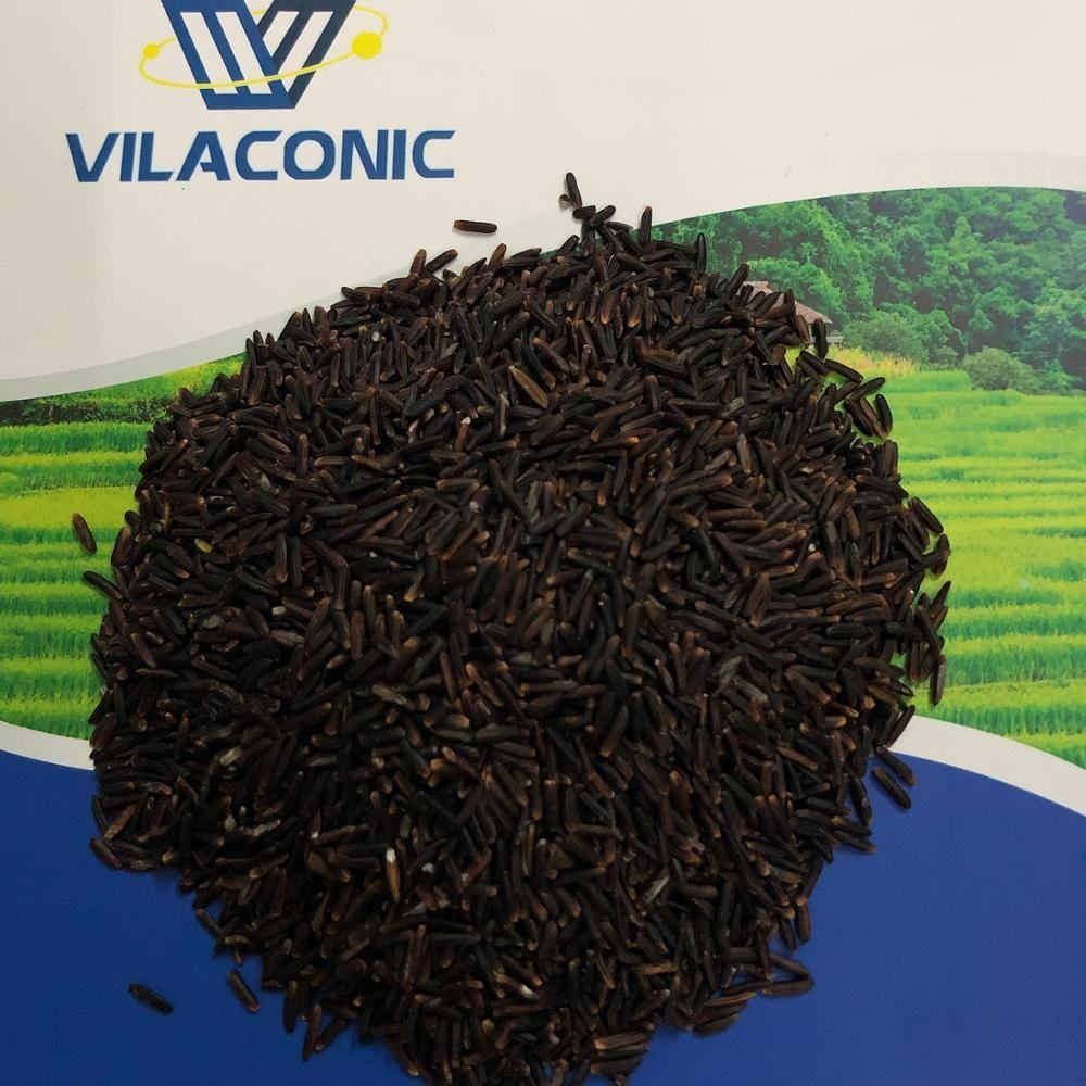 ROYAL GOLDEN BLACK RICE FOR WHOLESALE, PREMIUM QUALITY (WA: +84901182028 Ms.Diamond)