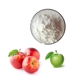 From Luo Chuan China Organic Apple Juice Powder/Green Apple Juice Powder