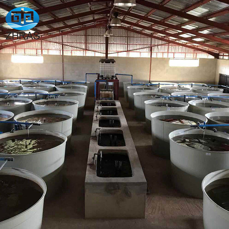 PP Cheap Fish Tanks for Recirculating Aquaculture System High quality commercial fish tanks supplier