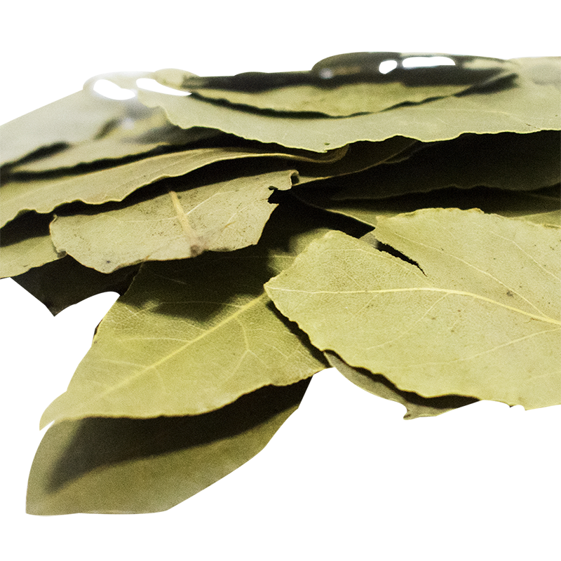 dired Bay leaf 25g Laurus nobilis bay leaves bulk with haccp certification for super market