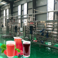 All fruit fully automatic concentrates machine natural berry pineapple tomato mango apple citrus orange juice production line