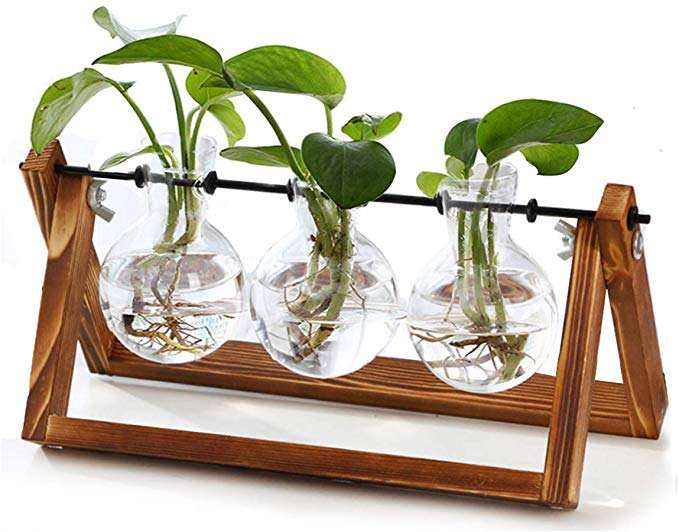 Plant Terrarium Wooden Stand Air Planter Bulb Glass Vase Metal Swivel Holder Retro Tabletop Hydroponics Home- 3 Bulb Vase