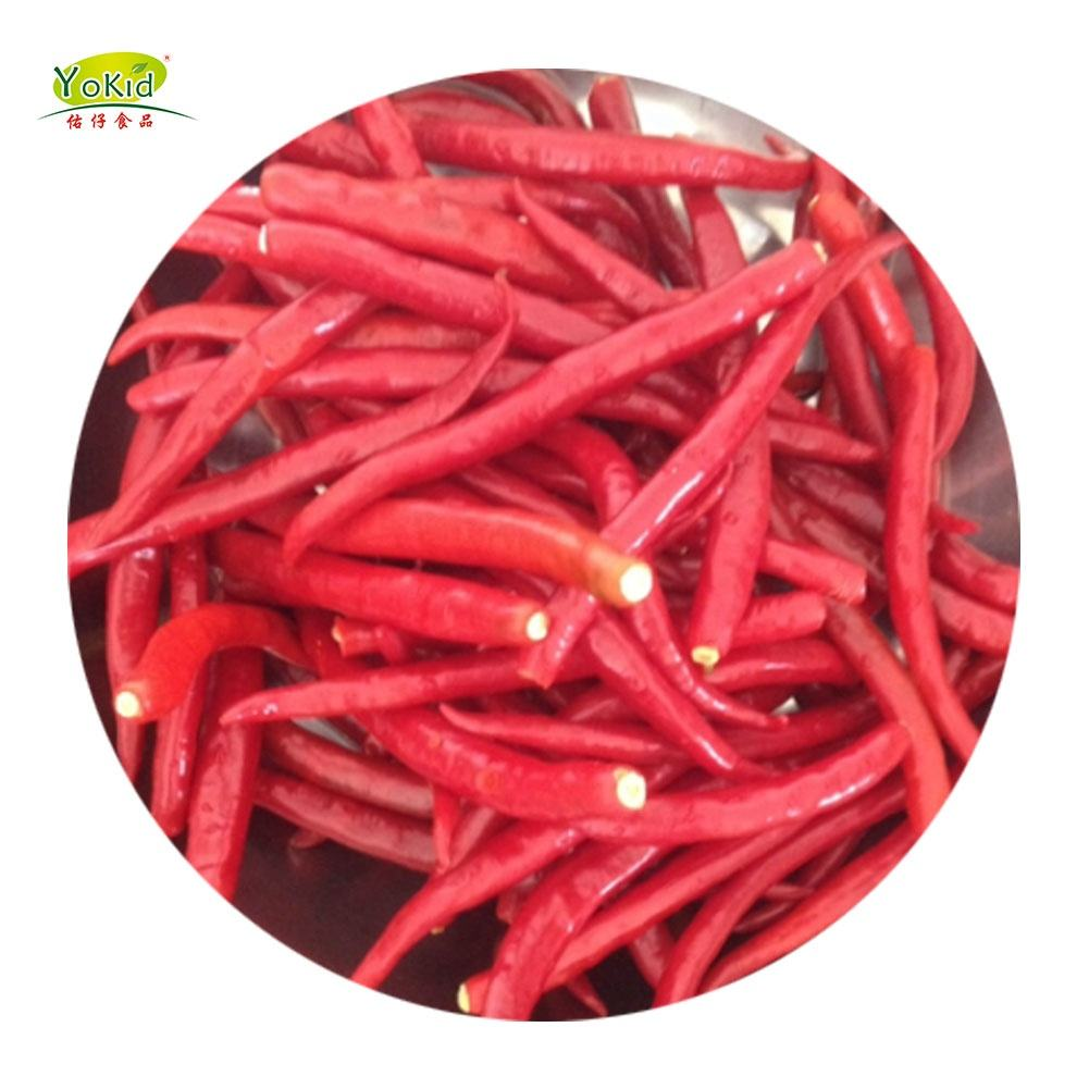 Export Of Qingdao Specification Red Chili