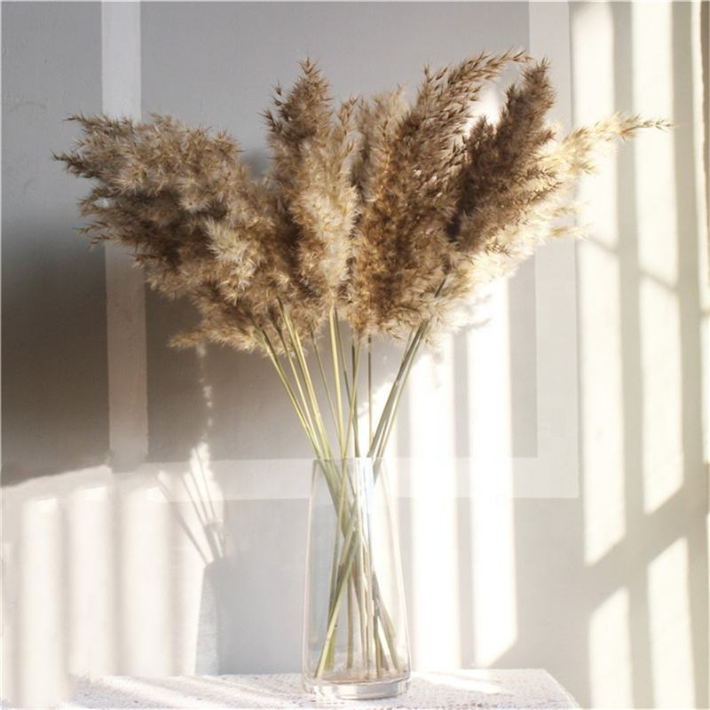 Gift Wholesale Artificial Flowers Real Natural Dried Large Pampas Grass For Wedding Decoration