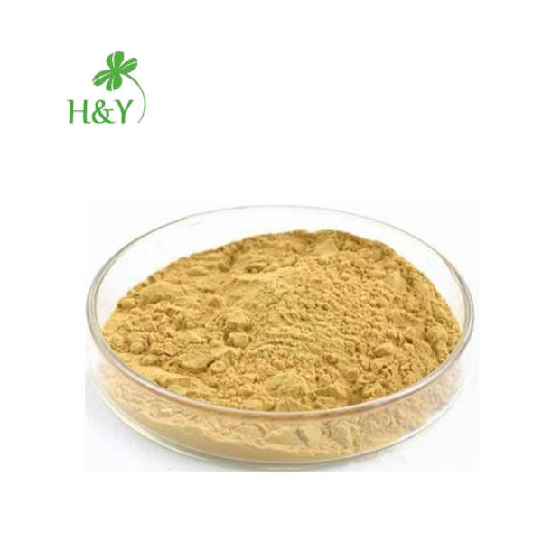 Free shipping hot selling noni extract powder noni fruit juice price in bulk