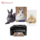 Top RC Inkjet 260G Glossy Portable Photo Printer Paper