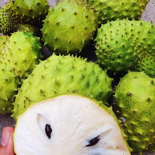 Fresh guyabano fruit