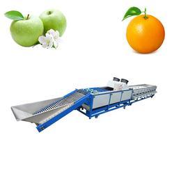 hot sale fruit & vegetable sorting machine Potato Onion Apple Tomato Kiwi Blueberry Size Grading washing Weight sorter price