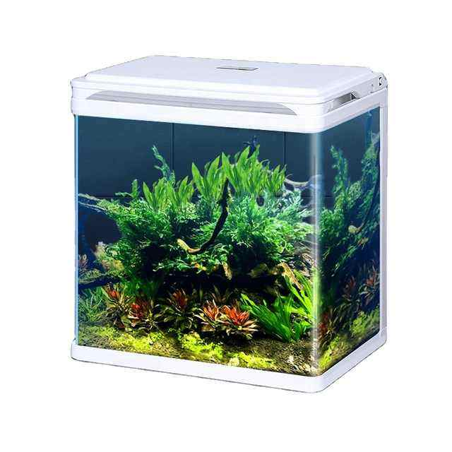 Wholesale fashionable small fish tank aquarium with round corners led light