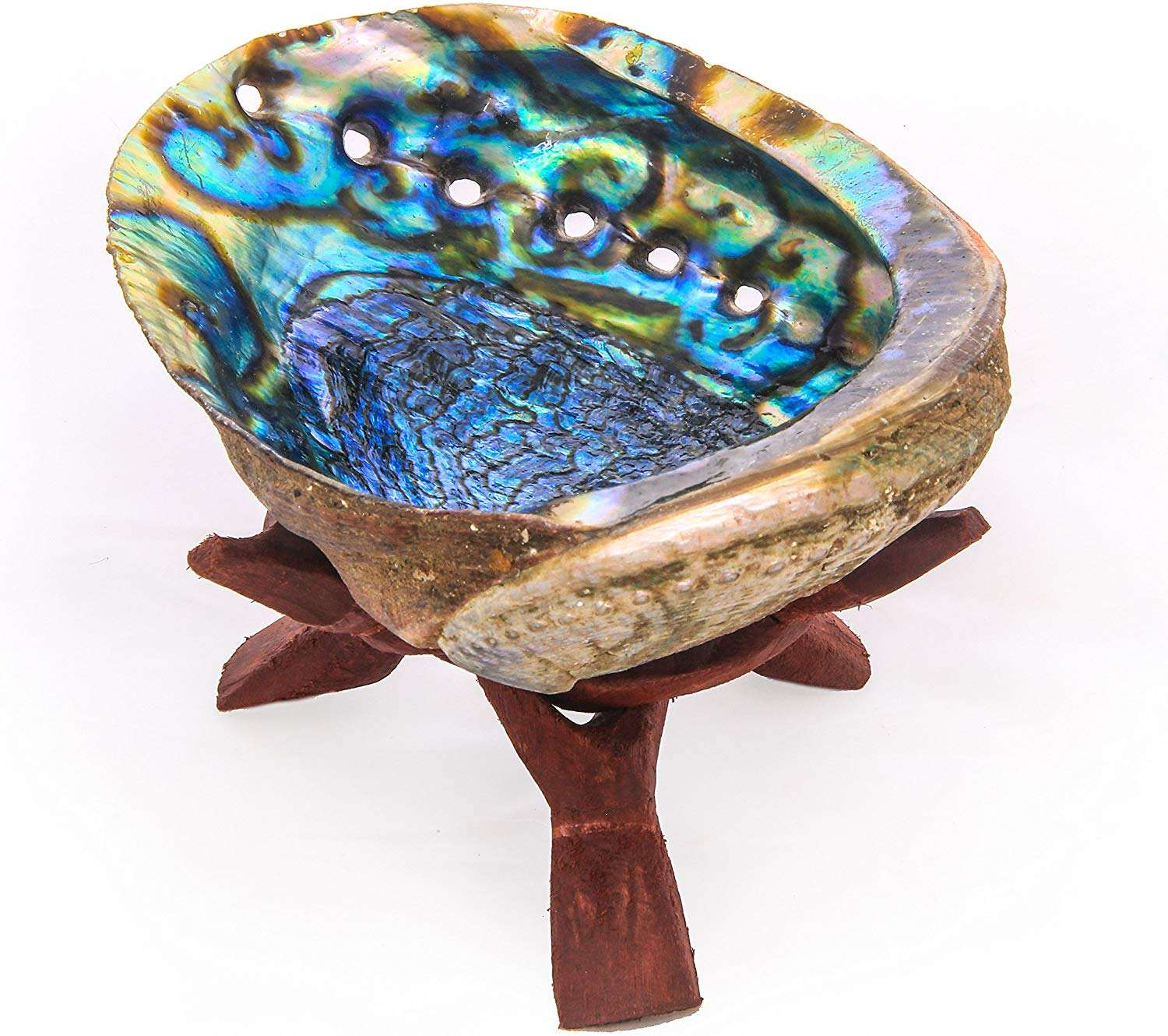 Quick Shipping for Beautiful Color abalone shell Used in cleaning smudge kit