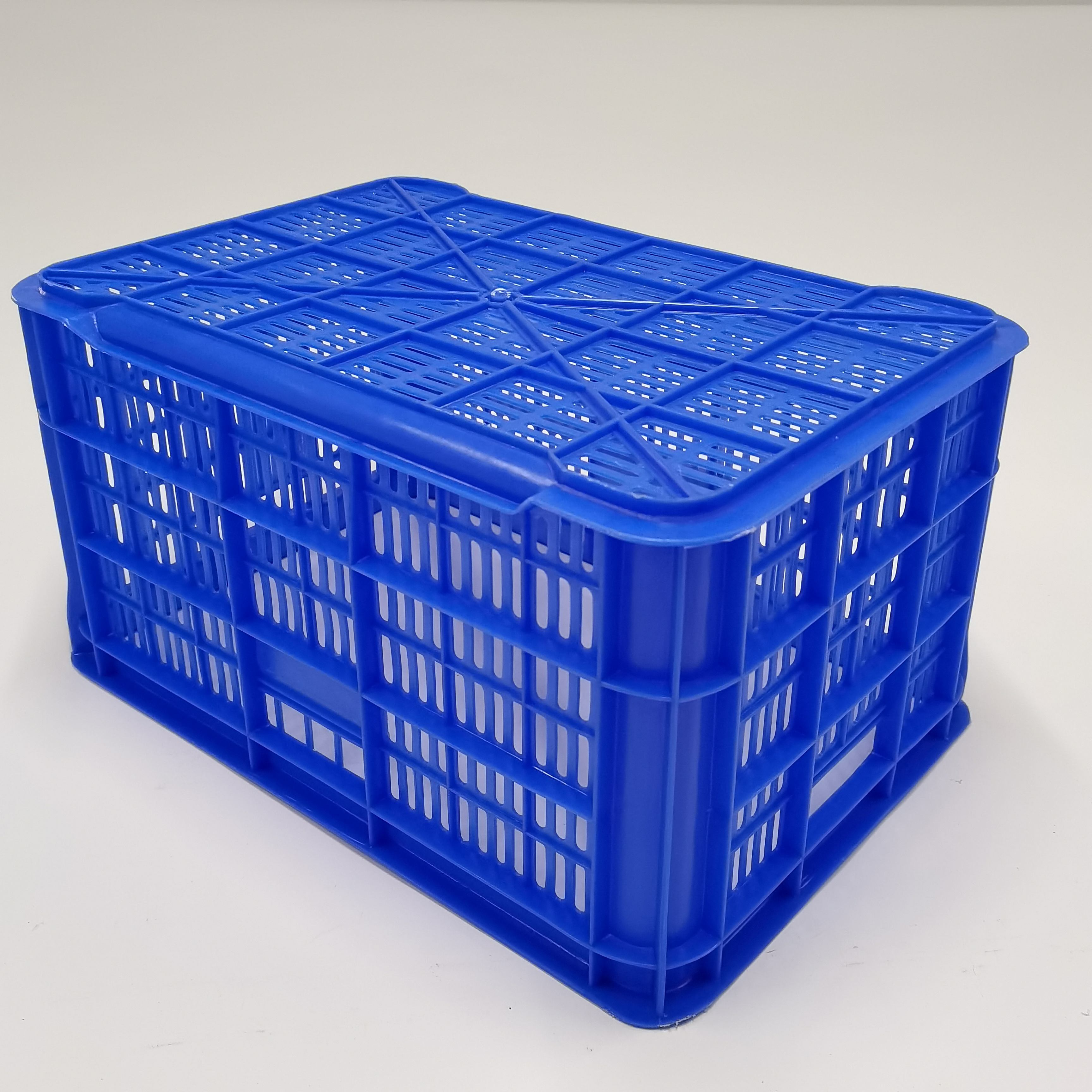 JSD Good Quality India Make Heavy Duty Fruits And Vegetables Plastic Crates Strong Plastic Mesh Crates