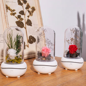 Decoration Small Perfume Aromatheray Diffuser with Battery Essential Oil Diffuser Humidifier for Home Office