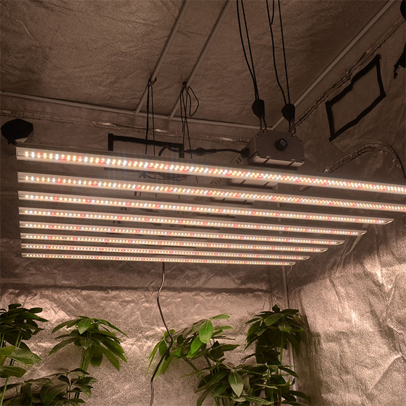 Boya Dimmable 600w 1000w Grow Lamp 600 1000 Watt hps LED Grow Light for Indoor Garden Plant