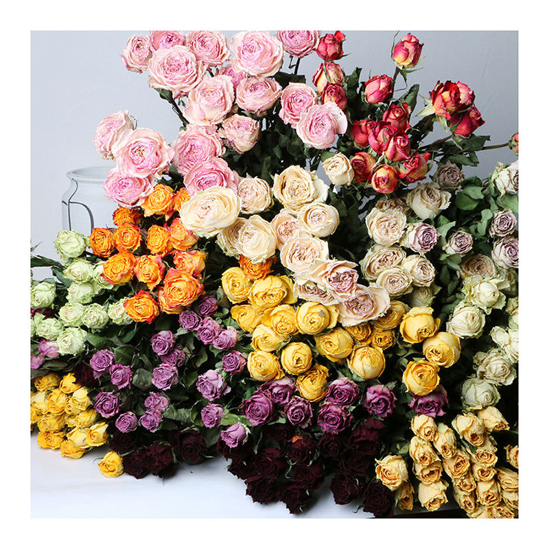yunnan wholesale Hand holding bouquet of single head dried rose flower