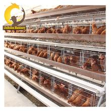 Jinmuren Used Poultry Farming Equipment