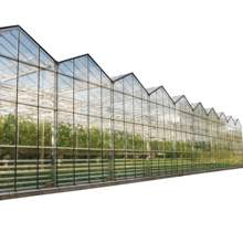 Agricultural  greenhouse farm with grow equipment