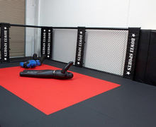 mma cage octagon floor for fighting/ mma cage prices size octagon/ mma cage uk wall sales