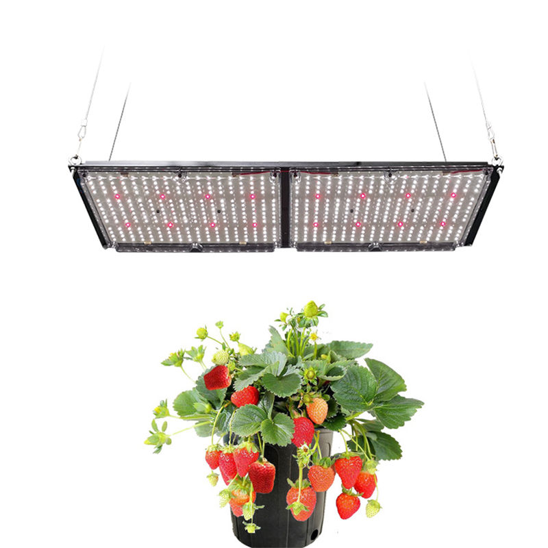 Meijiu New Design Lightshades COB Full Spectrum LED Grow Light Greenhouse, Samsung LM301B+Osram 660NM LED Module Grow Light