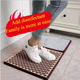 Mats Design Door Mat Custom Shoe Anti Bacterial Sanitized Door Welcome Disinfecting Mats